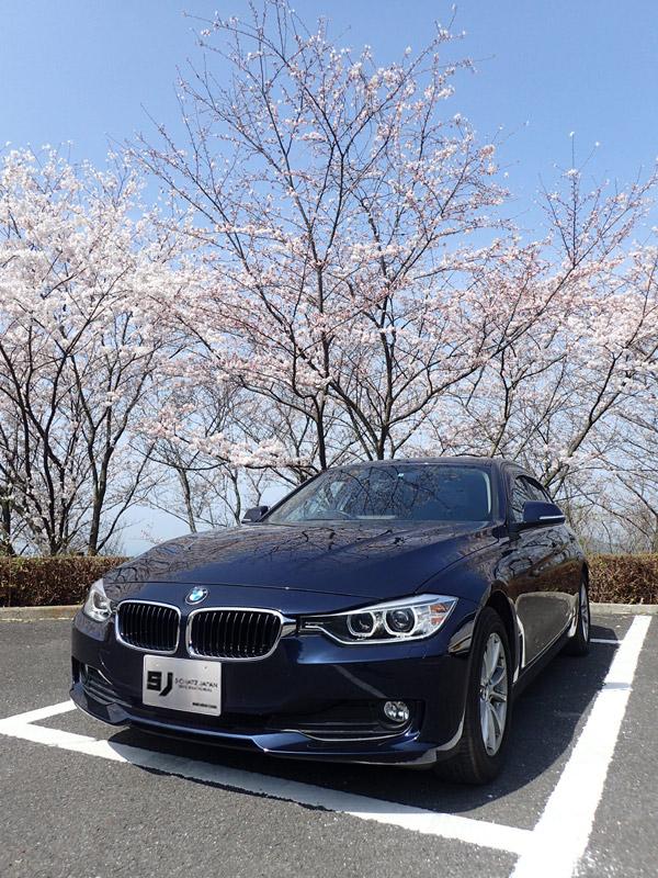 海山城展望台の桜とBMW