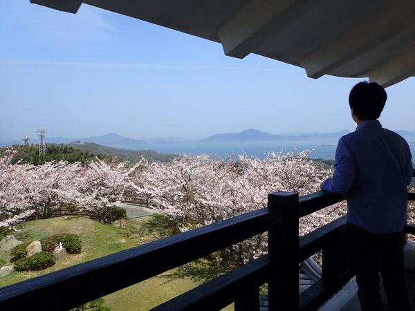 海山城展望台とヒロシ