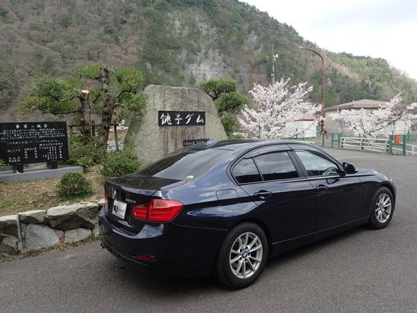 銚子ダム公園の桜とBMW320d