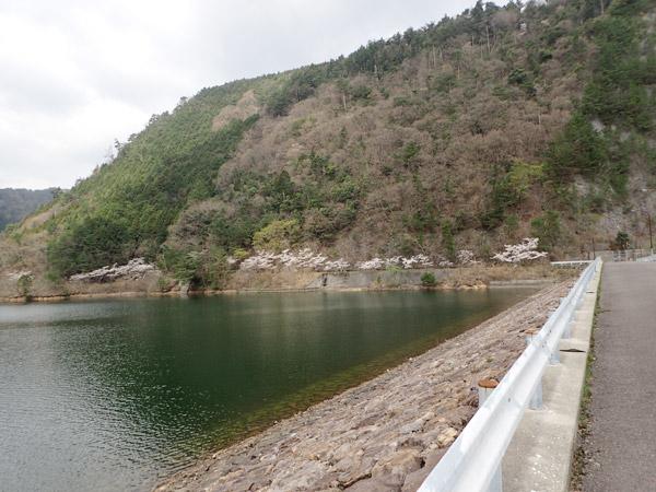 銚子ダム公園のブラックバス釣り