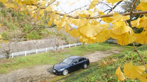 BMW3シリーズと紅葉