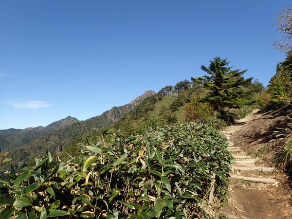 石鎚山と石鎚スカイライン経路