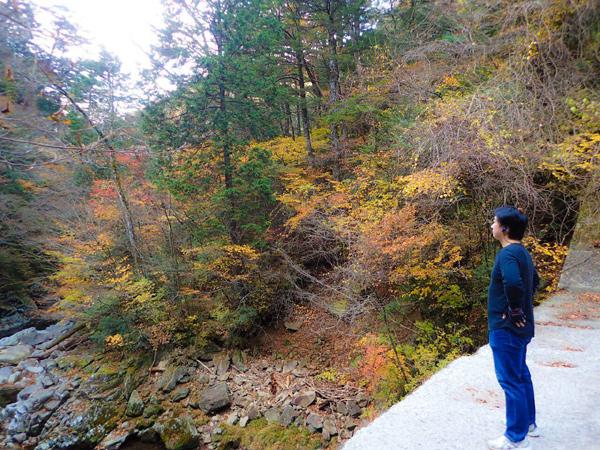 御来光の滝へのルート堰堤