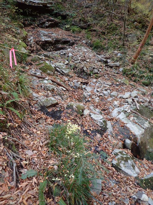 御来光の滝登頂ルートのロープ渡り