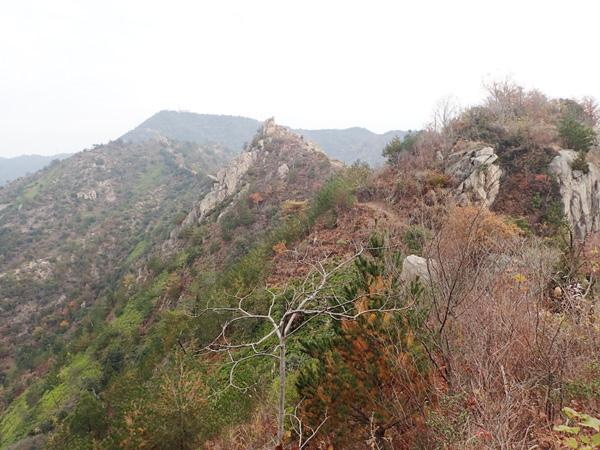 安神山山頂付近