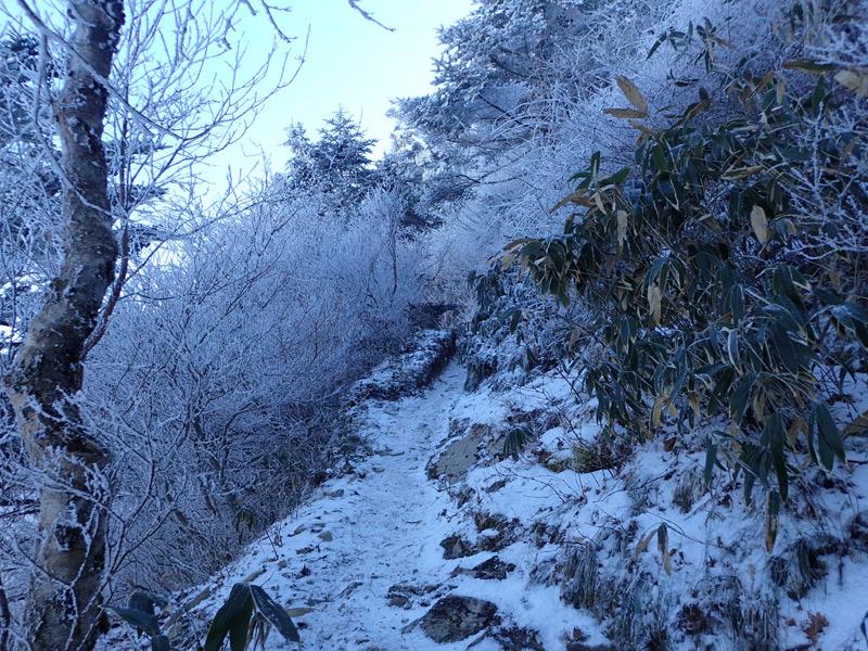 伊予富士の雪山