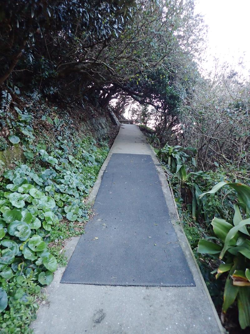 佐田岬灯台へ続く遊歩道