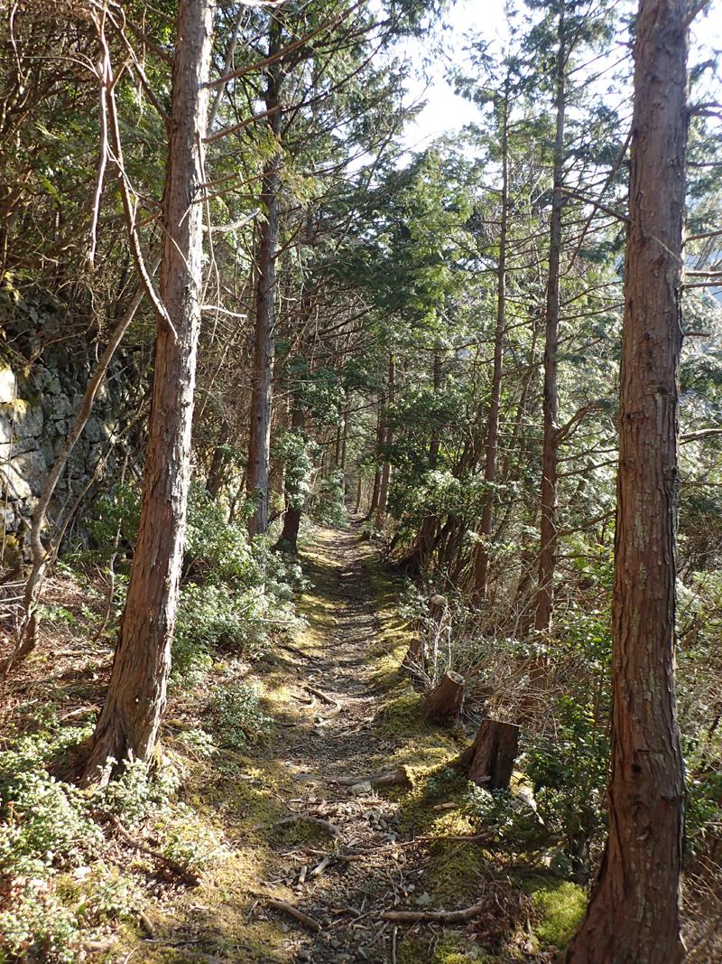 別子銅山の東平 上部鉄道跡