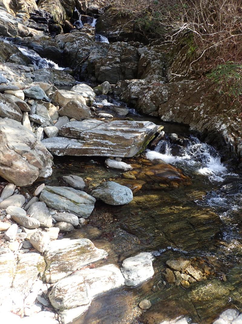 東赤石山系の渓谷美