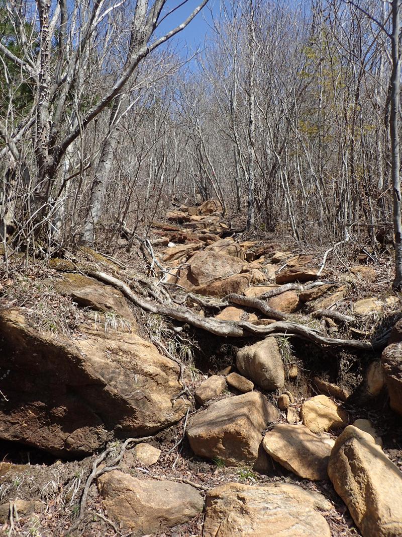 東赤石山系のかんらん岩