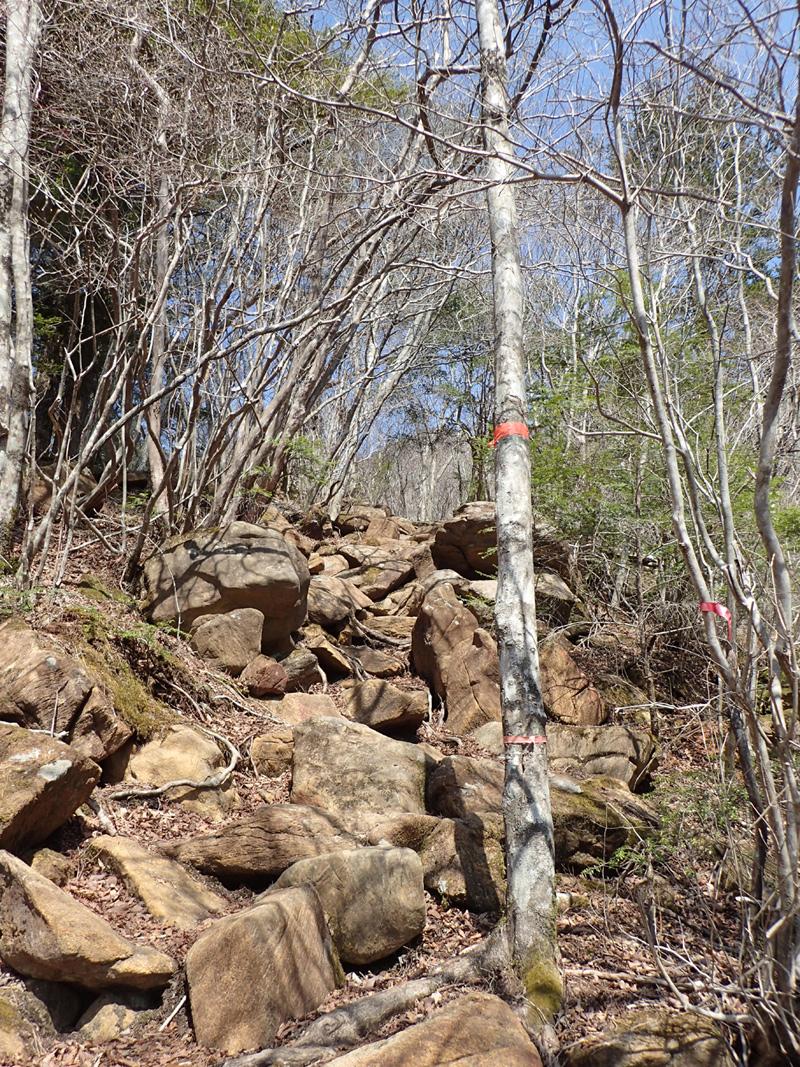 東赤石山のかんらん岩
